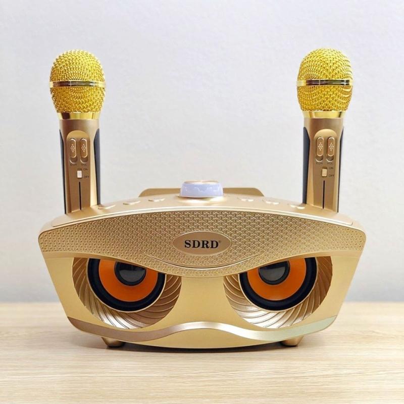 Loa karaoke SD-306 kèm 2 micro