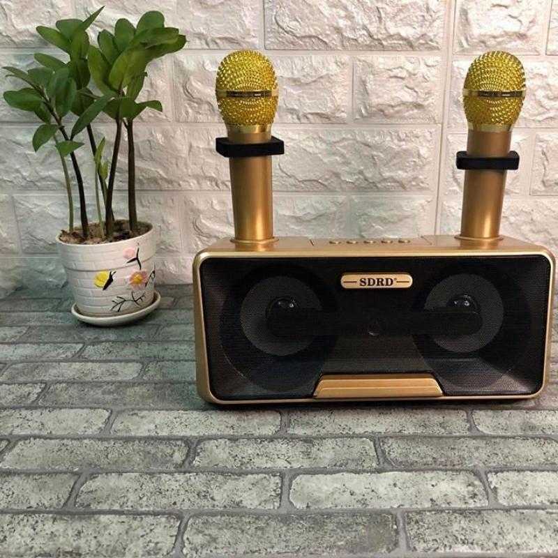 Loa karaoke bluetooth SD-301